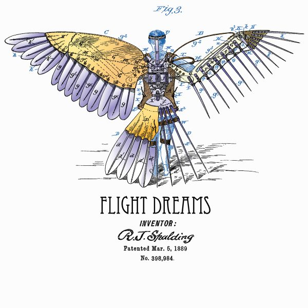 Flight Dreams design created for multiple DTG and screen printed products
